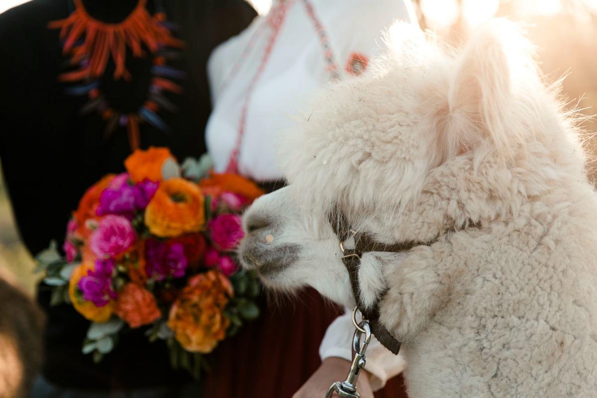 Hochzeit Fotografen München_MonaundReiner 3